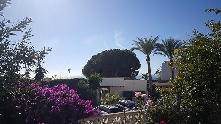 Eftermiddagssol från terrassen!
