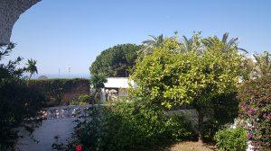 Trädgårdens andra del med havsutsikt!