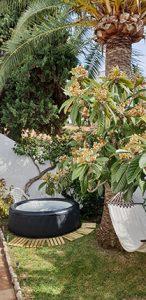 Spa-badet med den fantastiska utsikten upp mot palmen!