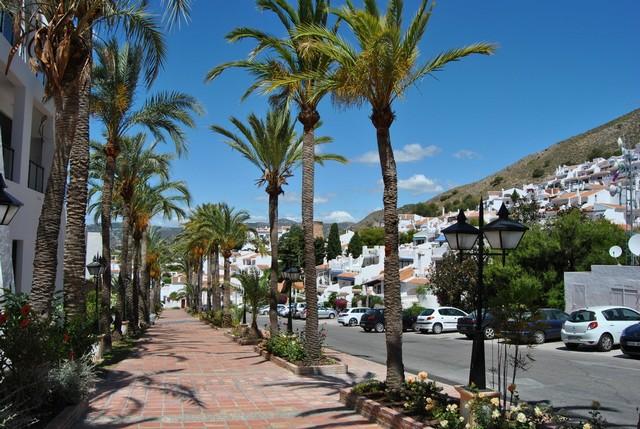 Vy nedför gatan med den vackra palmallén!