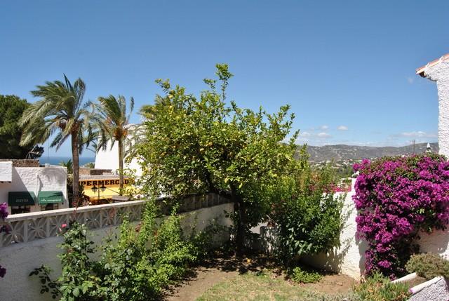 Det ljuvliga citronträdet med bergen som fondvägg!